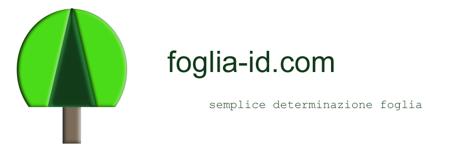 foglia-ID.com